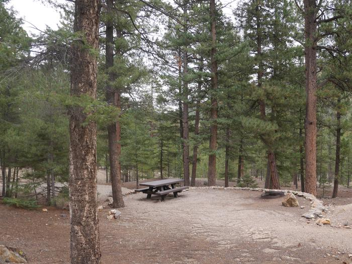 Elephant Rock Campground Red River, NM